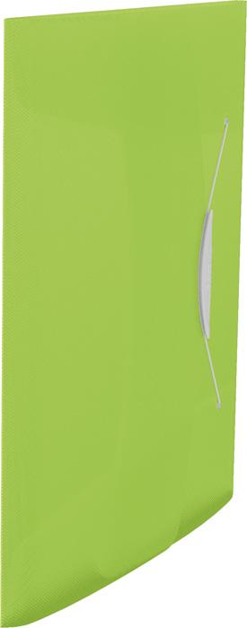 Spisové desky A4 s gumou Vivida - zelená